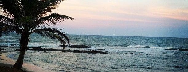 Praia da Oca is one of Lugares favoritos de Ju.
