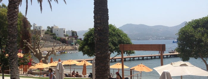 Xuma Beach Club Bar is one of Bodrum !!.