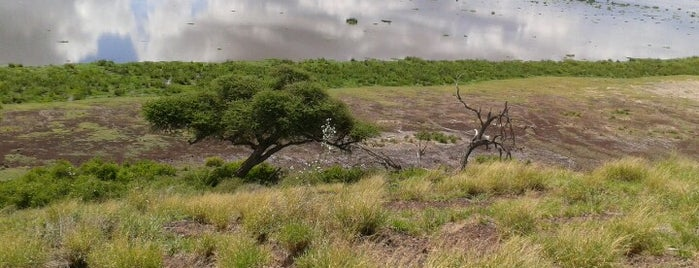 Observatory Hill-Amboseli National Park is one of Locais curtidos por Anton.