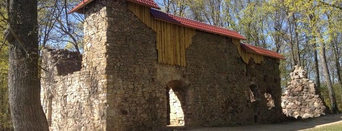 Lielvārdes Pilsdrupas is one of Замки Прибалтики.