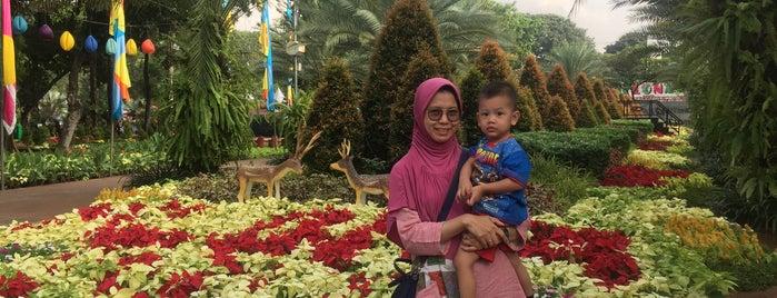 Festival Flora & Fauna Lapangan Banteng is one of Jakarta.