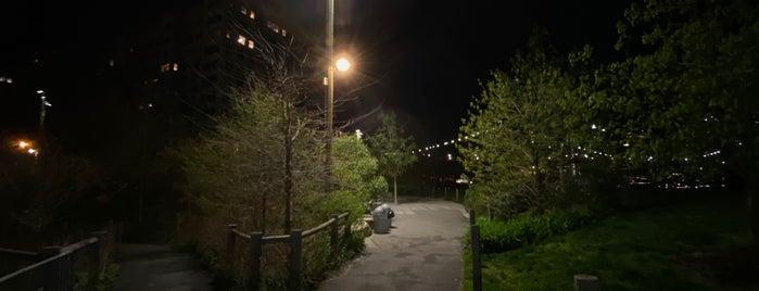 Brooklyn Bridge Park - Main Street Section is one of New York.