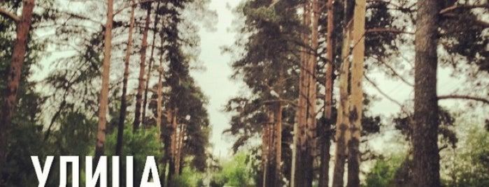 Микрорайон Звездочка is one of Lugares favoritos de Илья.