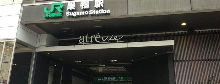 Sugamo Station is one of JR 미나미간토지방역 (JR 南関東地方の駅).