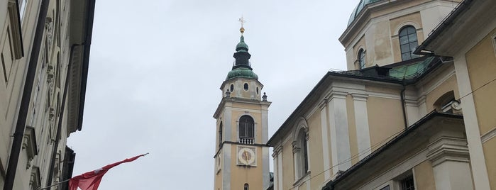Stolnica Sv. Nikolaja / The Cathedral is one of Carl 님이 좋아한 장소.