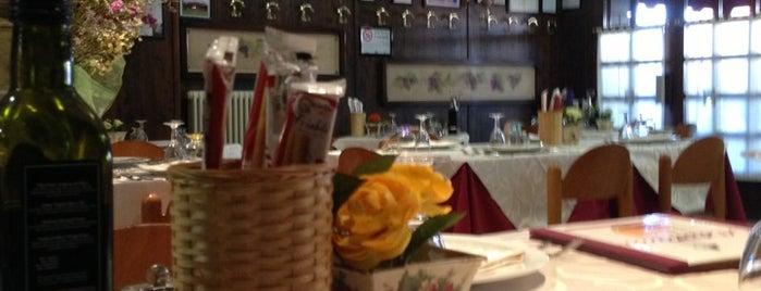 Trattoria da Romano is one of Pappa in giro per l'Italia.