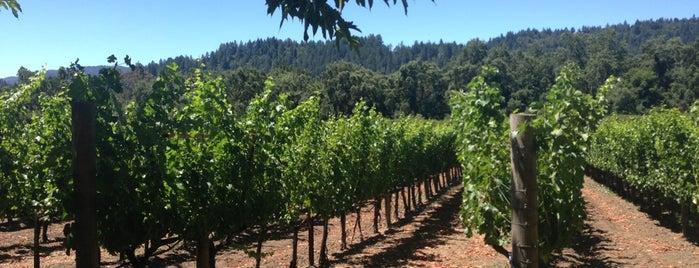 Duckhorn Vineyards is one of Napa Valley Favorites.
