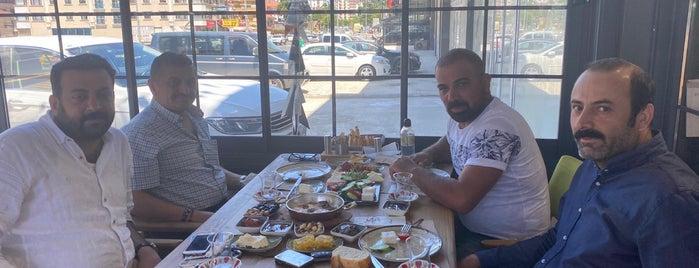 Mis Başak - Keklik Şube is one of Locais curtidos por PNR.