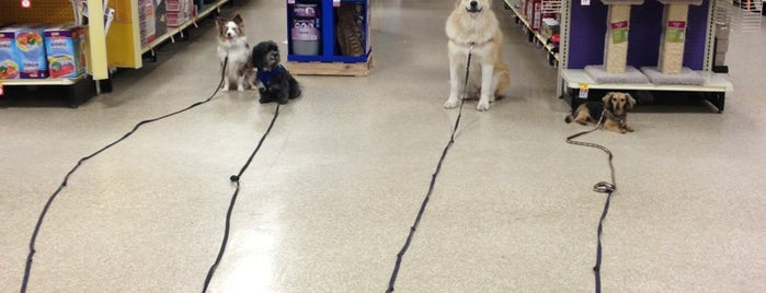 PetSmart is one of Done List.