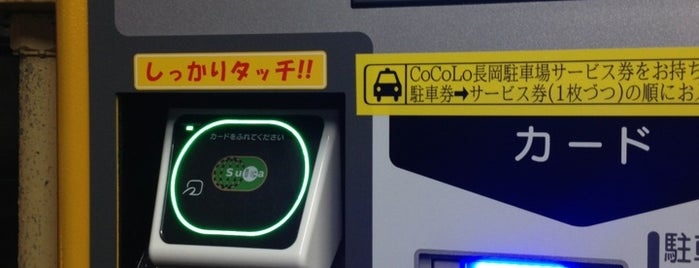 CoCoLo Nagaoka is one of สถานที่ที่ 高井 ถูกใจ.