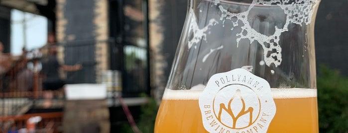 Pollyanna Brewing Company is one of Lugares favoritos de Ross.