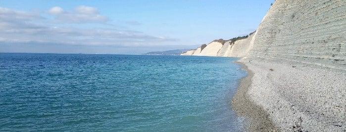 Дикий пляж Сосновка is one of สถานที่ที่ Jano ถูกใจ.