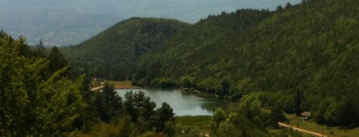 Şirinyazı Göleti is one of Di'nin Beğendiği Mekanlar.