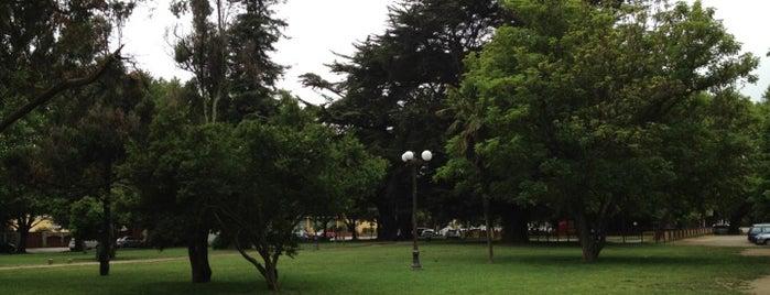 Parque Ecuador is one of สถานที่ที่ Luis ถูกใจ.