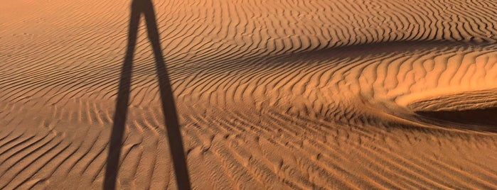 Liwa Dunes is one of Dmitryさんのお気に入りスポット.