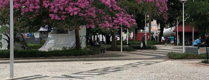 São José is one of Tempat yang Disukai Cristiane.