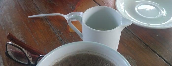 Brewed Awakenings is one of Belize.