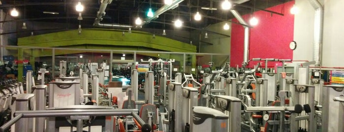 Holiday Gym is one of Gym.