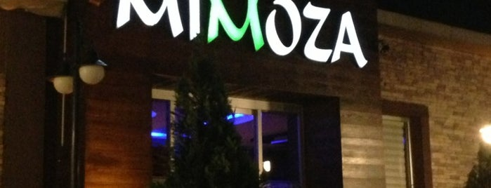 Park Mimoza is one of n..