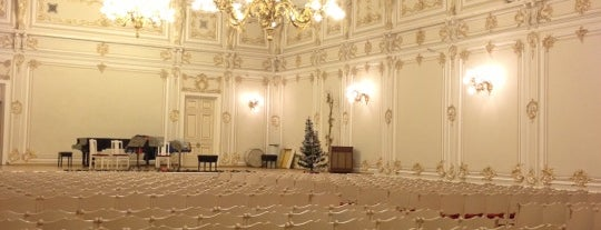 Small Hall of St Petersburg Philharmonia is one of สถานที่ที่ Valeria ถูกใจ.