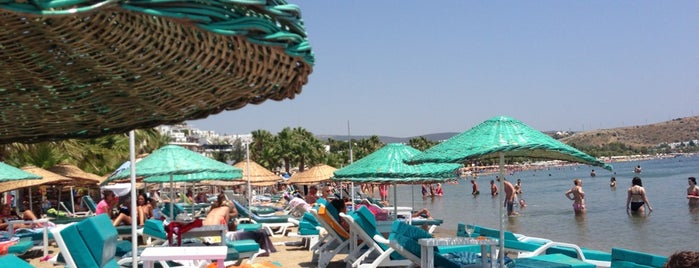 Gümbet Plajı is one of Bodrum.