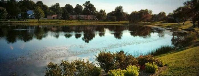 Whispering Meadows is one of Posti salvati di Tolga.