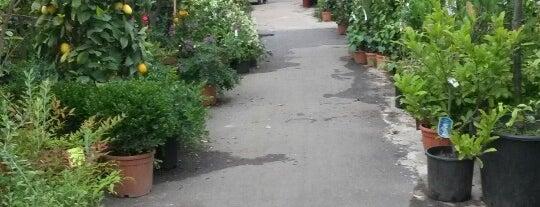 Hobby Garden dei Navigli is one of Negozi vari.