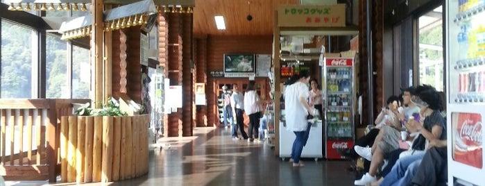 Torokko-Kameoka Station is one of Darwin'in Beğendiği Mekanlar.