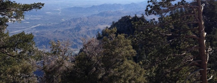 Mount San Jacinto State Park is one of Palm Springs.