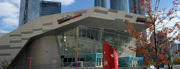 Ripley's Aquarium of Canada is one of All-time favorites in Canada.