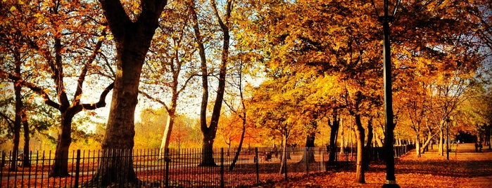 Holland Park is one of London.