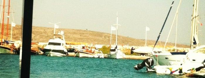 Balıkçı Niyazi is one of Alaçatı'nın En İyileri / Best of Alacati.