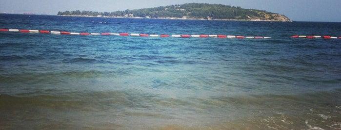 Aya Nikola Plajı is one of Locais curtidos por Sibel.