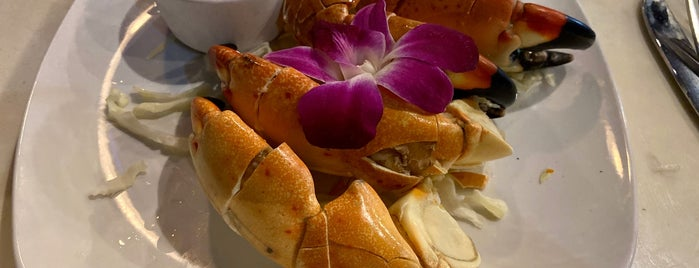 Casablanca Seafood Bar & Grill is one of Orte, die Eduardo gefallen.