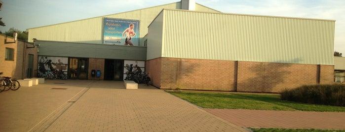 Sport Vlaanderen Blankenberge is one of Vrije tijd.