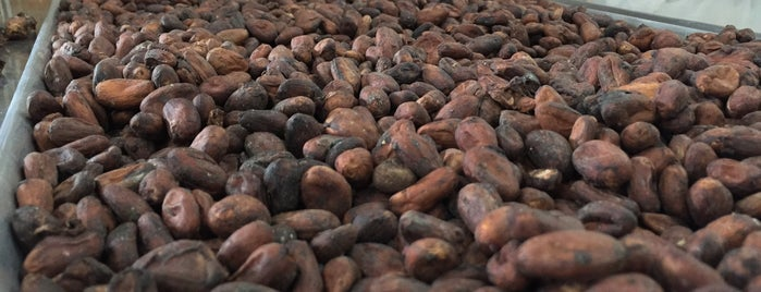 Cacao de origen is one of Locais curtidos por Jimmy.