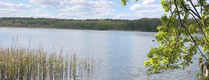 Stienitzsee is one of Brandenburg Blog.
