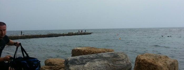 Old Caesarea Diving Club מועדון צלילה קיסריה is one of สถานที่ที่ Avinoam ถูกใจ.