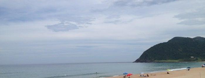 Praia da Silveira is one of Best places in Garopaba, Rosa e Guarda do Embaú.