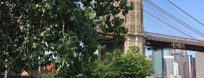 Brooklyn Bridge Park is one of Boerum Hill/Cobble Hill/Brooklyn Heights.