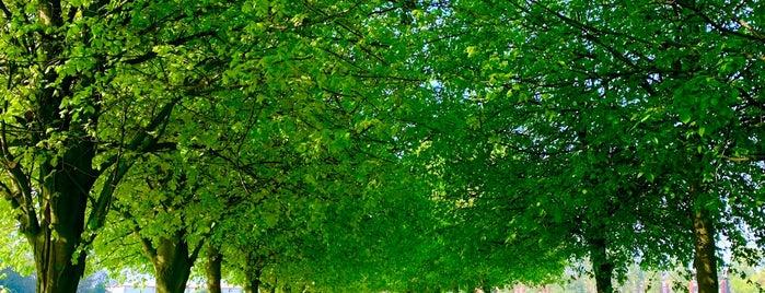 Wavertree Botanic Gardens is one of liverpool.