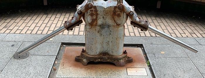 """O-Pump-sama (""""Honorable"""" Pump) is one of 広島 呉 岩国 北九州 福岡."""