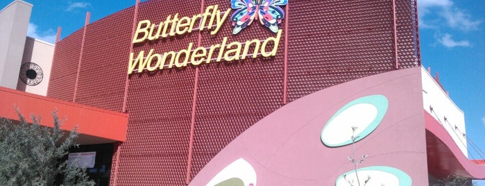 Butterfly Wonderland is one of Arizona.