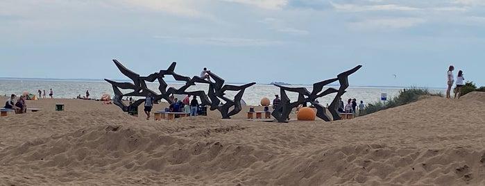 Скульптурная композиция «Чайки» is one of Сестрорецк и побережье Финского залива.