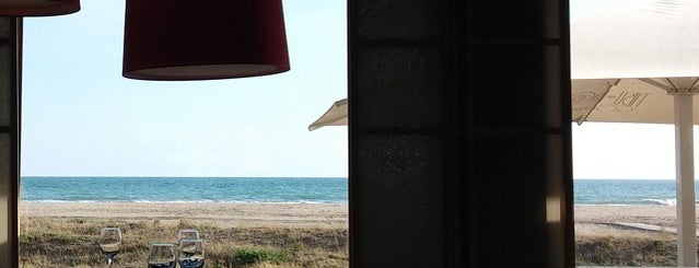 Ristorante Tibu-Ron is one of Restaurants.