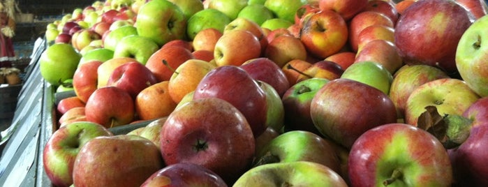 Schutt's Cider Mill is one of Upstate.
