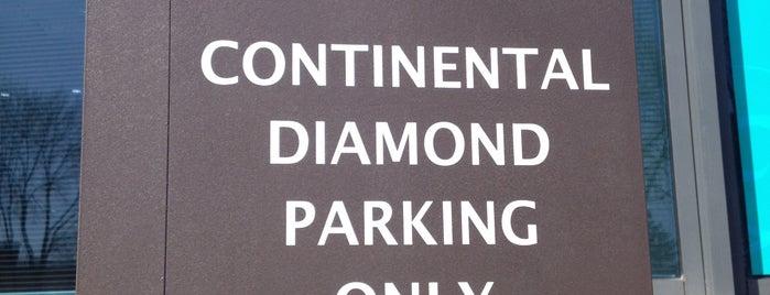 Continental Diamond is one of Jay : понравившиеся места.