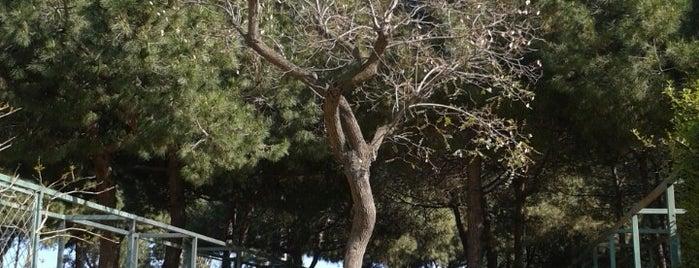 Parc del Poblenou is one of Ruta a Sant Martí. La ruta verda.