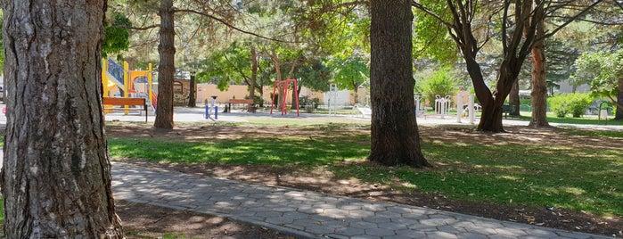 Havacılar Parkı is one of Tempat yang Disukai Özlem.