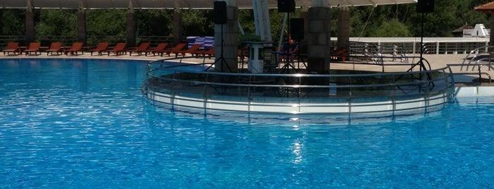 Plavnica Eco Resort is one of Montenegro Wifi spots.
